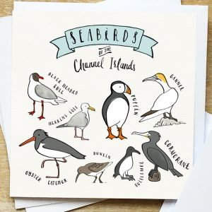 Seabird card of the Channel Islands
